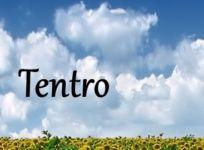 Tentro 2016/2017