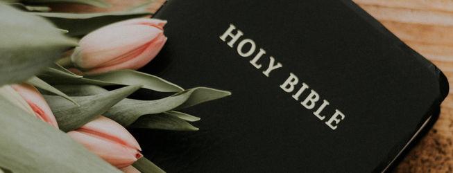 Vi leser Bibelen sammen
